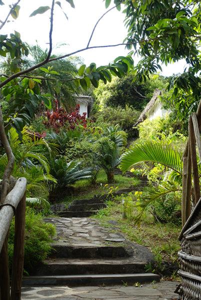 Indalo_Mayotte_Le Relais Forestier_Jardin-2