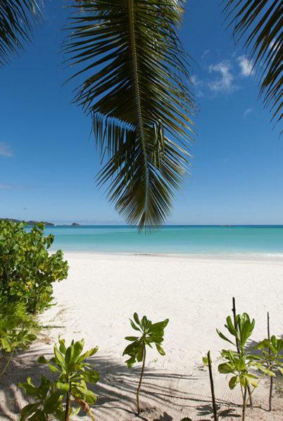 Indalo_Seychelles_Acajou_Beach-2